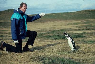 Mr Turner and the only friendly penguin in the Magellan Strait, Chile
